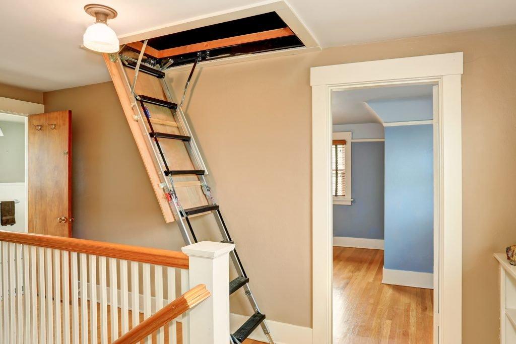 Loft Ladder   LoftandInsulation